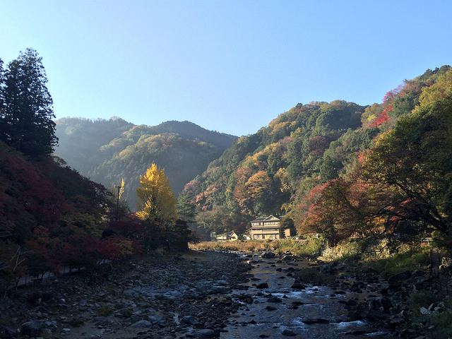 River in Japan. Photo by bryan... via Flickr. Some rights reserved.